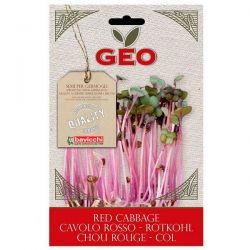 col Lombarda germinar geo - 12g [biocop]