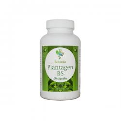 Plantagen BS - 60 Cápsulas [Botania]
