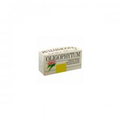 Oligophytum Cobalto - 100 Gránulos [Holistica]