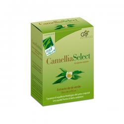 Camellia Sellect - 60 Cápsulas [100%Natural]