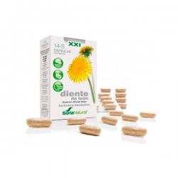 14-s dandelion - 30 capsules