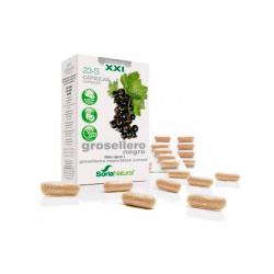 23-s black currant - 30 capsules