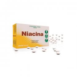 Niacina - 48 Tabletas Retardantes [Soria Natural]
