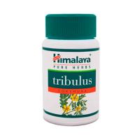 Gokshura Tribulus Terrestris - 60 Cápsulas [Himalaya]