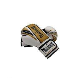 Vendaval fullboxing gloves
