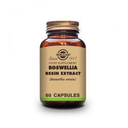Boswellia resin extract - 60 capsules