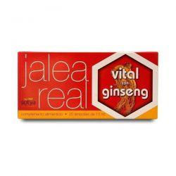 Geleia Real com Ginseng - 20 frascos