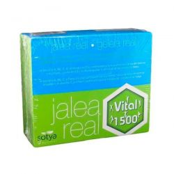 Geleia real Vital 1500 - 20 frascos