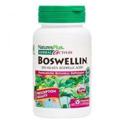Boswellin 300mg - 60 Cápsulas vegetales