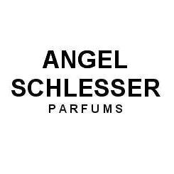 Logo Angel Schlesser